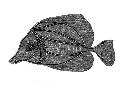 Natalia Klęczar, Fish Illustration cycle 2, digital printing